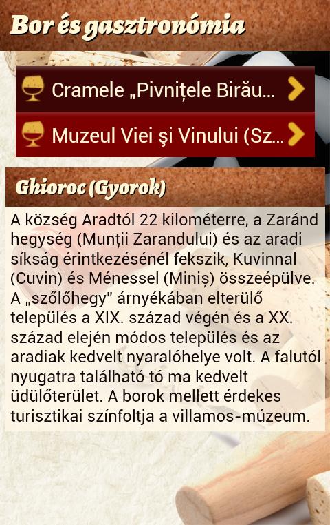bor_es_gasztornomia2